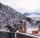 brasilien_vivario_03