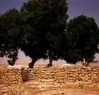 israel_jordan_05