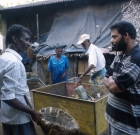 srilanka_geisterland_14
